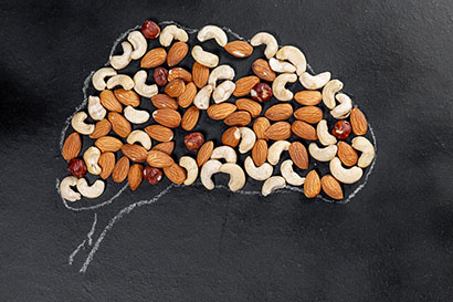 Brain shape from nuts